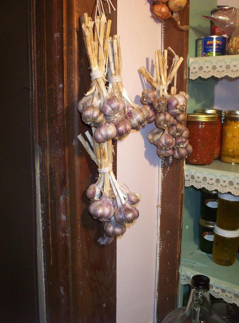 Garlic pantry 2