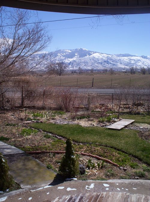 Spring view to mountains