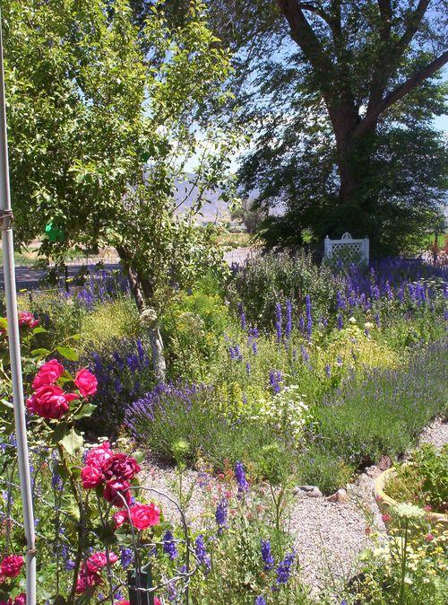 Peace Garden 2