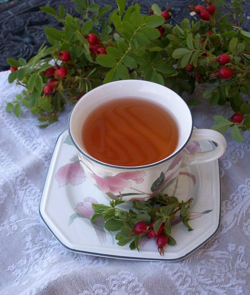Rose hip tea 2