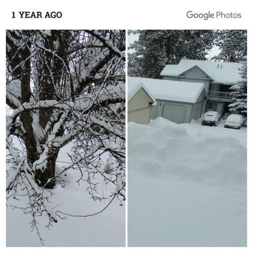 Snow level 2017